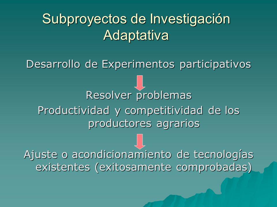 Subproyectos de Investigación Adaptativa Desarrollo de Experimentos participativos Resolver problemas Productividad y competitividad de los productores agrarios Ajuste o acondicionamiento de tecnologías existentes (exitosamente comprobadas)