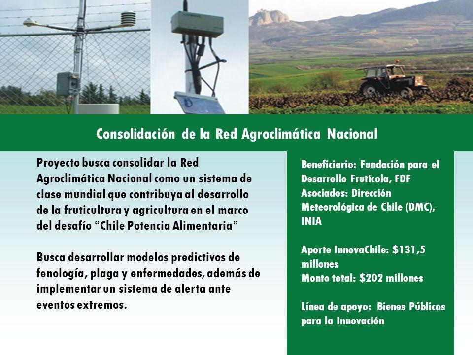 Proyecto busca consolidar la Red Agroclimática Nacional como un sistema de clase mundial que contribuya al desarrollo de la fruticultura y agricultura