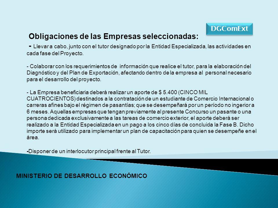 DGComExt MINISTERIO DE DESARROLLO ECONÓMICO Obligaciones de las Empresas seleccionadas: - Llevar a cabo, junto con el tutor designado por la Entidad Especializada, las actividades en cada fase del Proyecto.
