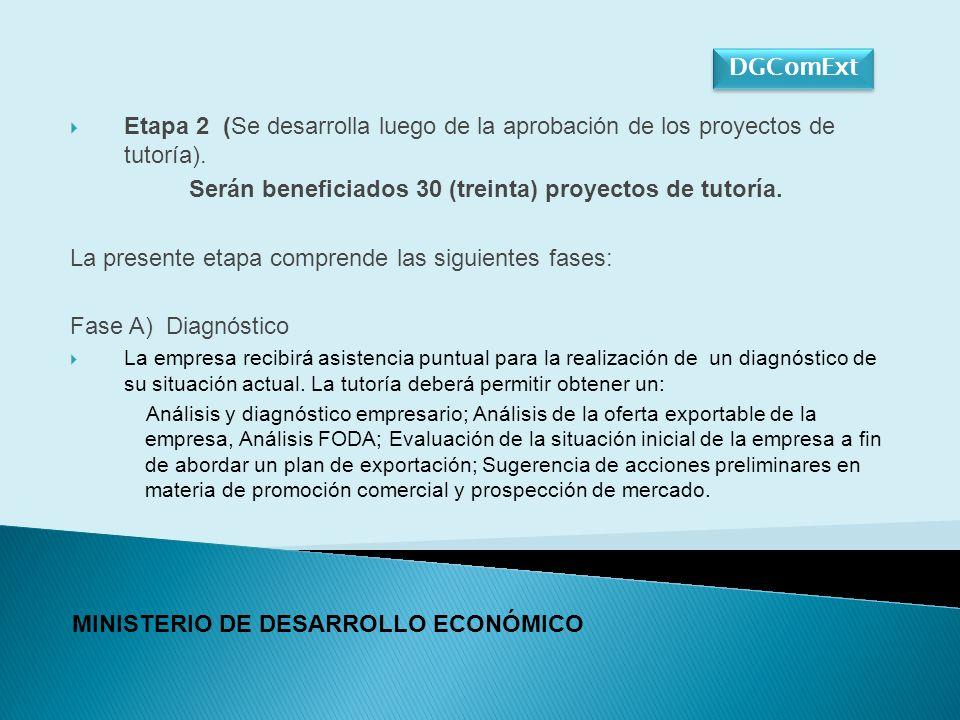 Fase B) Diseño del Plan de Exportación Consiste en la tutoría de los Proyectos que posean un diagnóstico favorable.