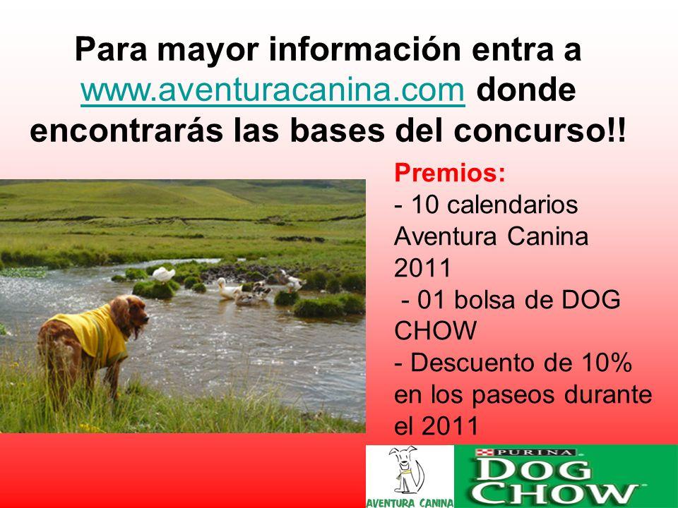 Premios: - 10 calendarios Aventura Canina 2011 - 01 bolsa de DOG CHOW - Descuento de 10% en los paseos durante el 2011.