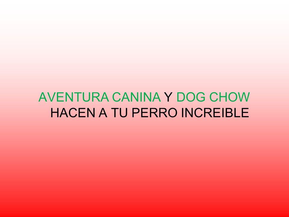 AVENTURA CANINA Y DOG CHOW HACEN A TU PERRO INCREIBLE