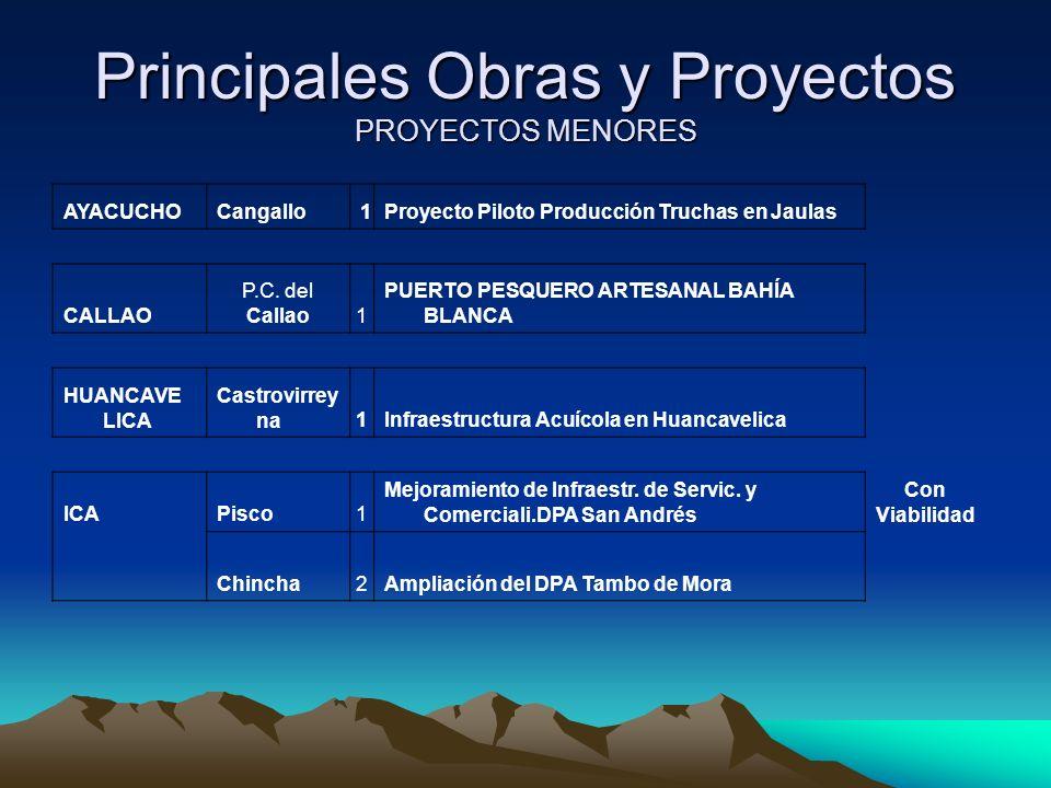 Principales Obras y Proyectos PROYECTOS MENORES AYACUCHOCangallo1Proyecto Piloto Producción Truchas en Jaulas CALLAO P.C.