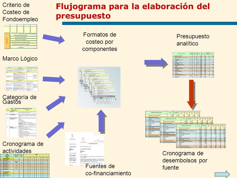 Marco Lógico Criterio de Costeo de Fondoempleo Categoría de Gastos Fuentes de co-financiamiento Presupuesto analítico Cronograma de actividades Cronog
