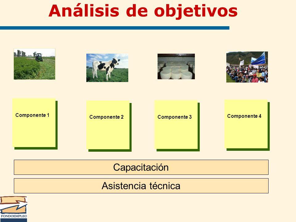 Análisis de objetivos Componente 1 Componente 2 Componente 3 Componente 4 Capacitación Asistencia técnica