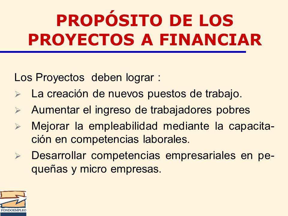 Los Proyectos deben lograr : La creación de nuevos puestos de trabajo. Aumentar el ingreso de trabajadores pobres Mejorar la empleabilidad mediante la