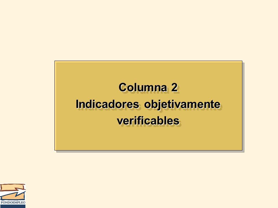 Columna 2 Indicadores objetivamente verificables Columna 2 Indicadores objetivamente verificables