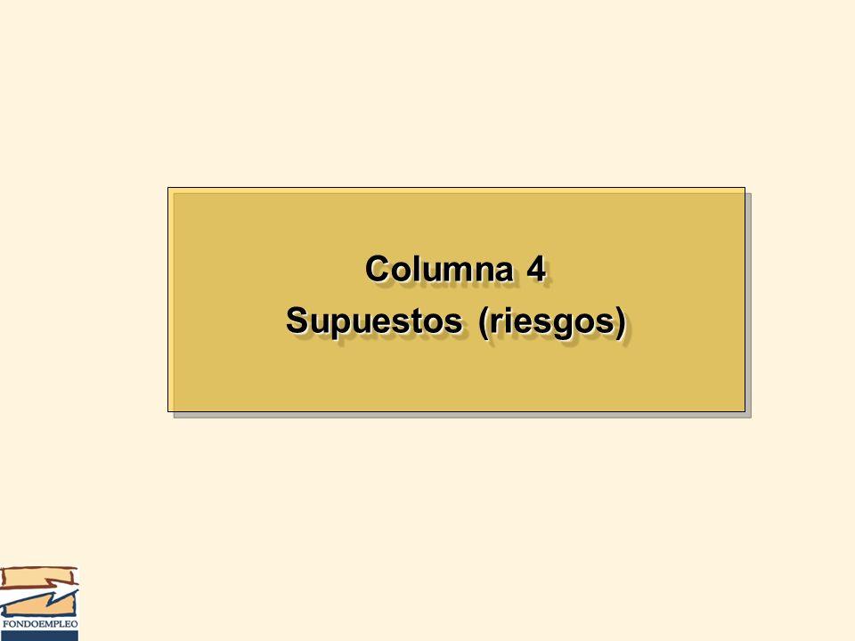 Columna 4 Supuestos (riesgos) Columna 4 Supuestos (riesgos)