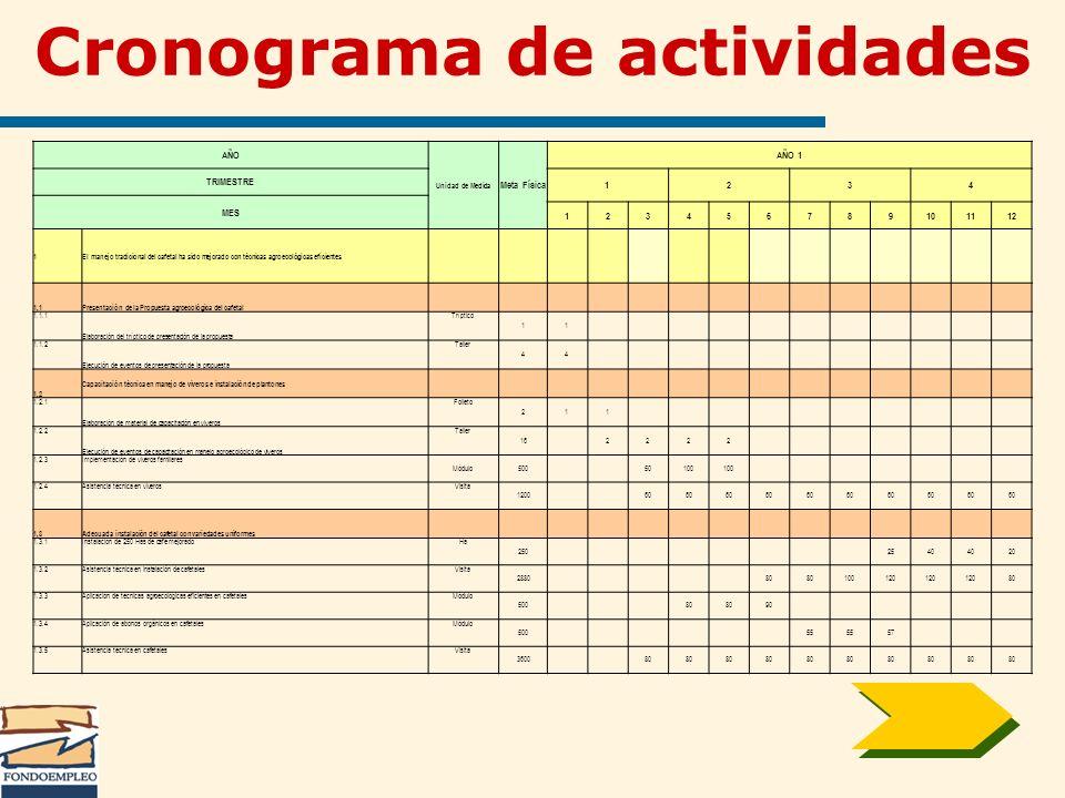 Cronograma de actividades AÑO Unidad de Medida Meta Física AÑO 1 TRIMESTRE 1234 MES 123456789101112 1El manejo tradicional del cafetal ha sido mejorad