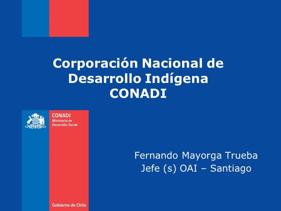 Jorge Retamal Rubio Director Nacional Visión e Implicancias del Convenio 169 Corporación Nacional de Desarrollo Indígena CONADI Fernando Mayorga Trueb