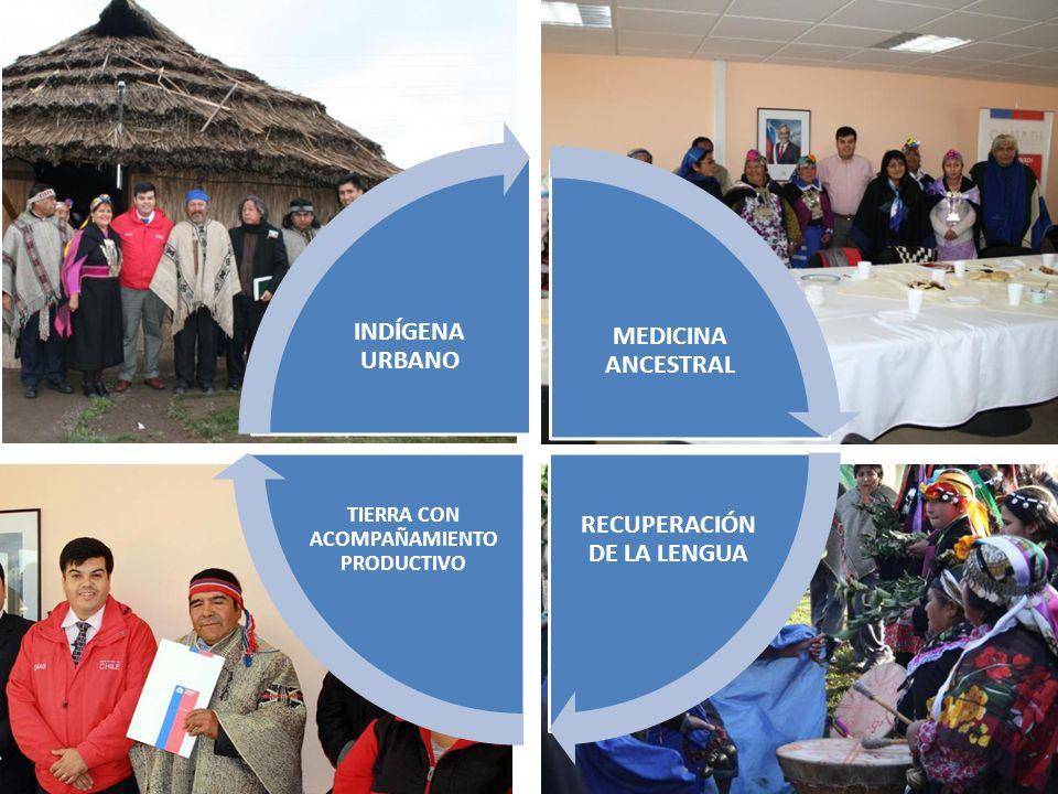 MEDICINA ANCESTRAL RECUPERACIÓN DE LA LENGUA TIERRA CON ACOMPAÑAMIENTO PRODUCTIVO INDÍGENA URBANO