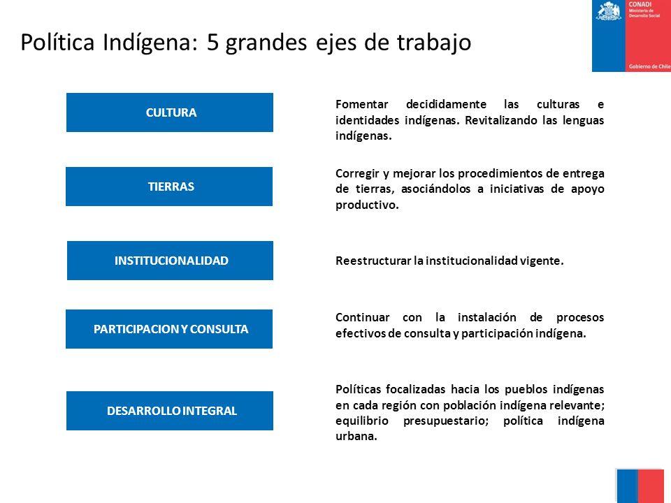 Política Indígena: 5 grandes ejes de trabajo PARTICIPACION Y CONSULTA TIERRAS CULTURA INSTITUCIONALIDAD DESARROLLO INTEGRAL Fomentar decididamente las culturas e identidades indígenas.