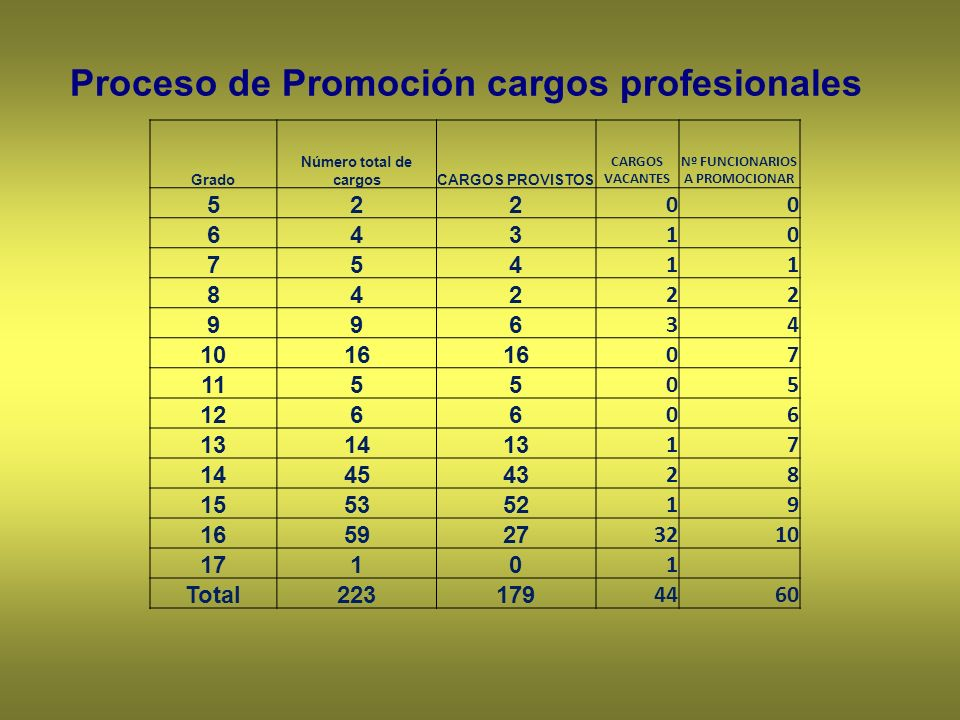 Proceso de Promoción cargos profesionales Grado Número total de cargosCARGOS PROVISTOS CARGOS VACANTES Nº FUNCIONARIOS A PROMOCIONAR 522 00 643 10 754 11 842 22 996 34 1016 07 1155 05 1266 06 131413 17 144543 28 155352 19 165927 3210 1710 1 Total223179 4460