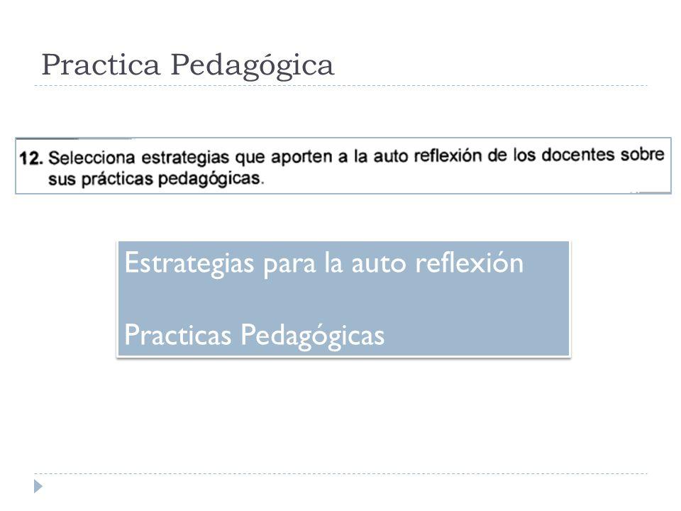 Practica Pedagógica Estrategias para la auto reflexión Practicas Pedagógicas Estrategias para la auto reflexión Practicas Pedagógicas