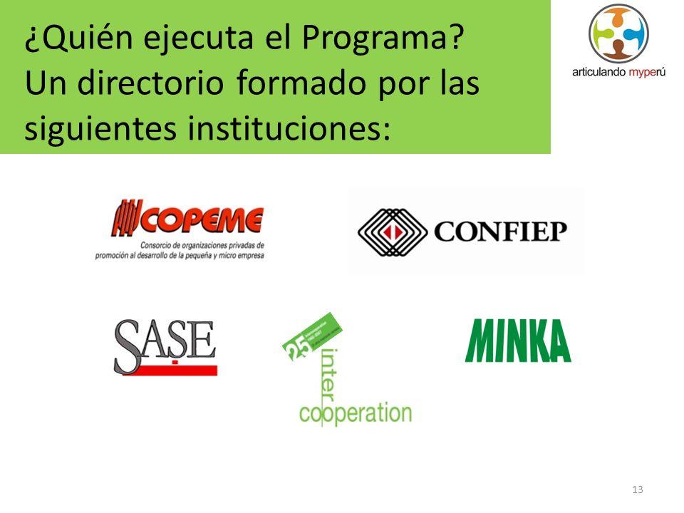 13 ¿Quién ejecuta el Programa? Un directorio formado por las siguientes instituciones: