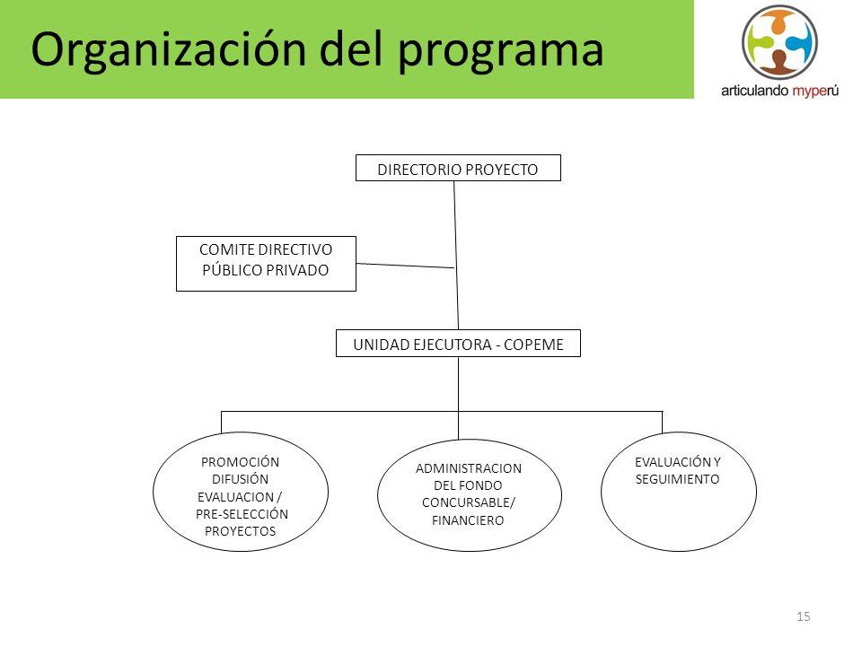 15 COMITE DIRECTIVO PÚBLICO PRIVADO DIRECTORIO PROYECTO PROMOCIÓN DIFUSIÓN EVALUACION / PRE-SELECCIÓN PROYECTOS ADMINISTRACION DEL FONDO CONCURSABLE/