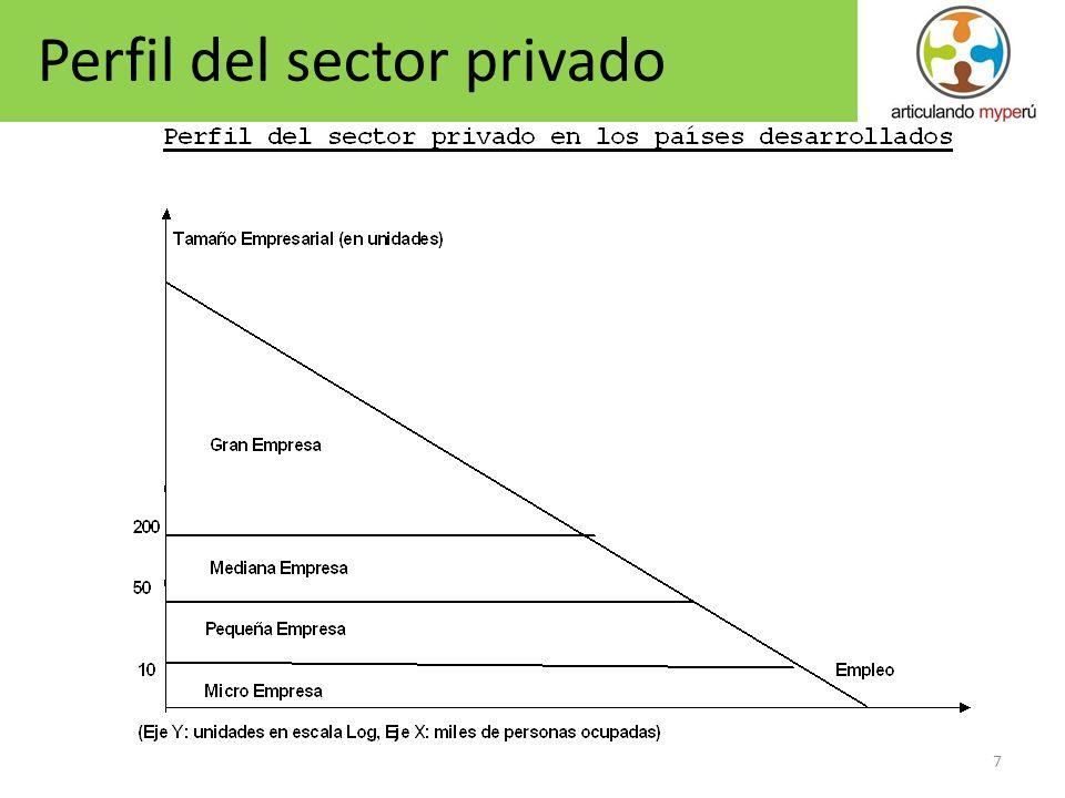 7 Perfil del sector privado
