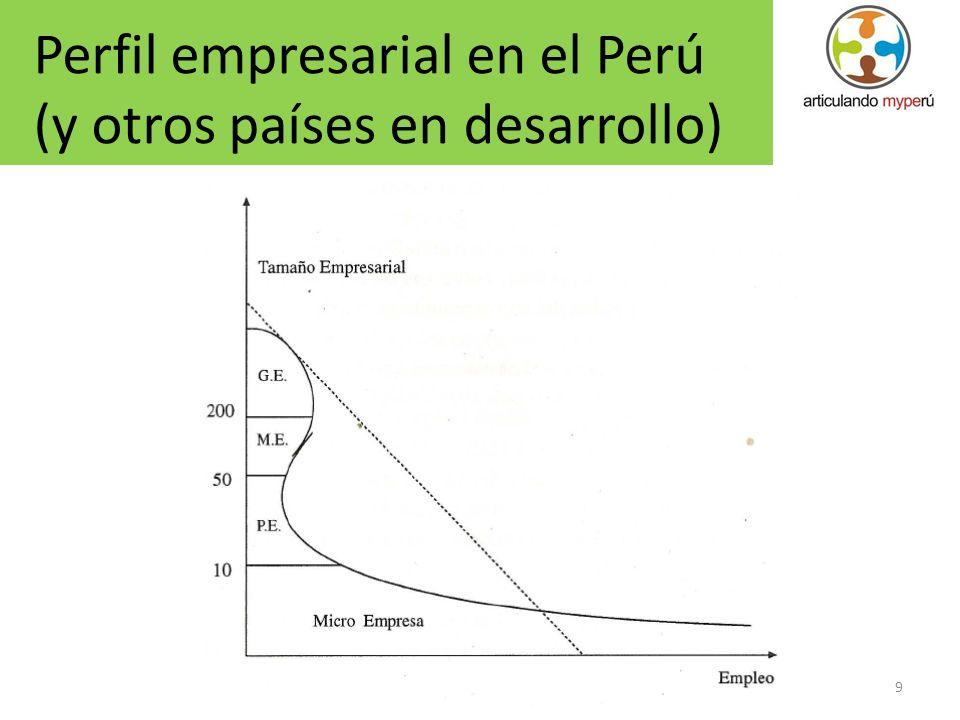 9 Perfil empresarial en el Perú (y otros países en desarrollo)