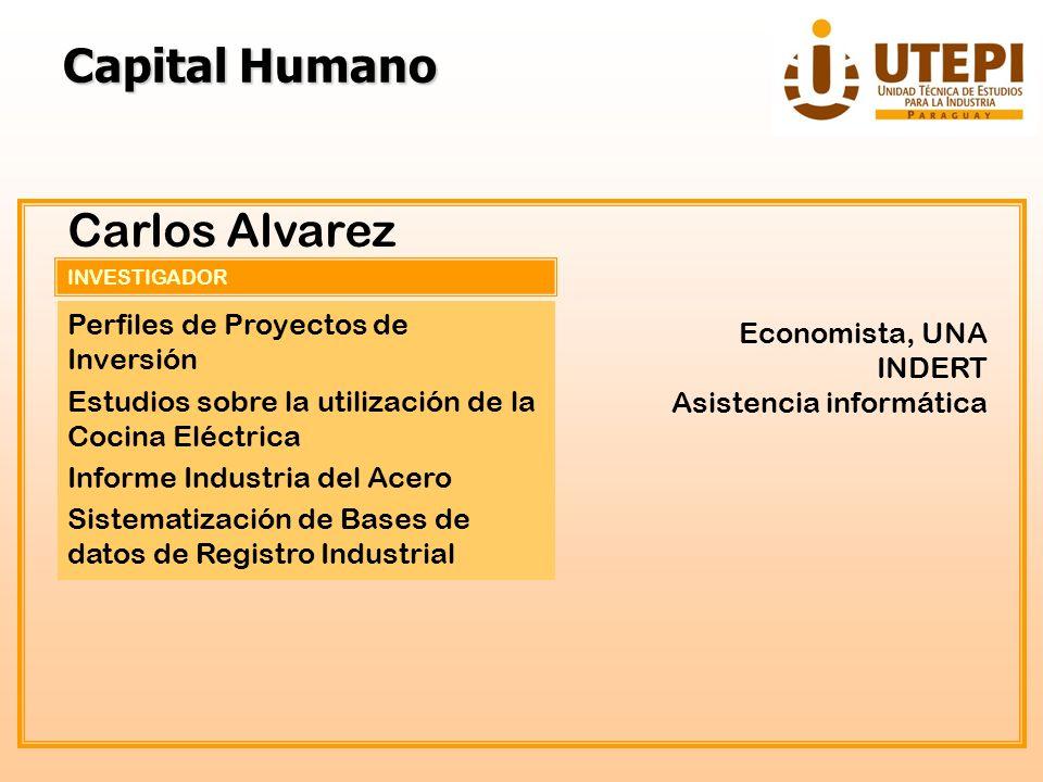 INVESTIGADOR Carlos Alvarez Perfiles de Proyectos de Inversión Estudios sobre la utilización de la Cocina Eléctrica Informe Industria del Acero Sistem