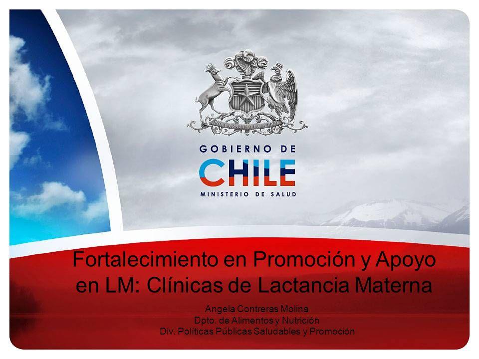 Fortalecimiento en Promoción y Apoyo en LM: Clínicas de Lactancia Materna Angela Contreras Molina Dpto. de Alimentos y Nutrición Div. Políticas Públic