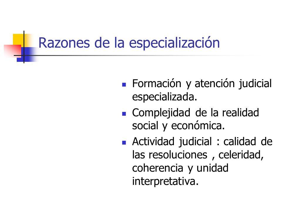 Razones de la especialización Formación y atención judicial especializada. Complejidad de la realidad social y económica. Actividad judicial : calidad