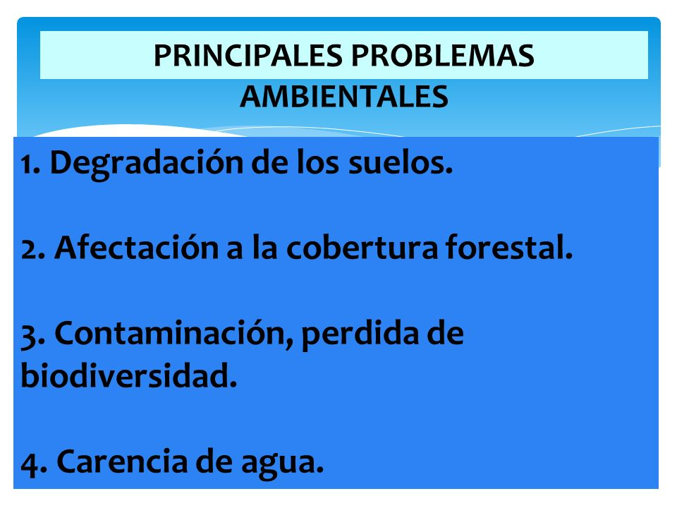 PRINCIPALES PROBLEMAS AMBIENTALES 1. Degradación de los suelos. 2. Afectación a la cobertura forestal. 3. Contaminación, perdida de biodiversidad. 4.