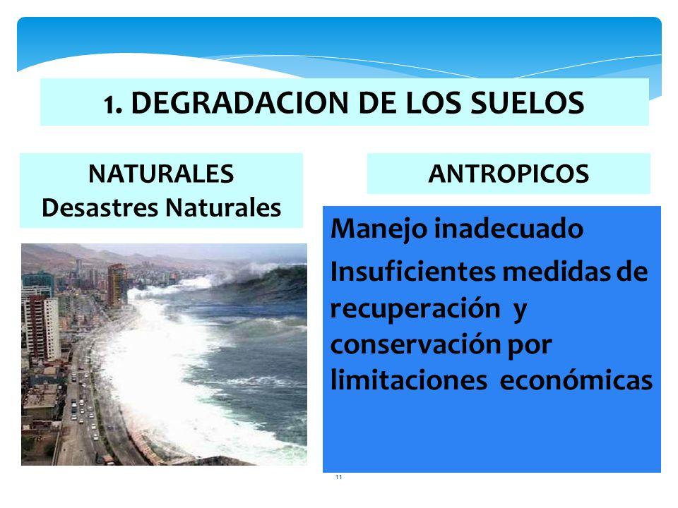 11 NATURALES Desastres Naturales 1. DEGRADACION DE LOS SUELOS ANTROPICOS Manejo inadecuado Insuficientes medidas de recuperación y conservación por li