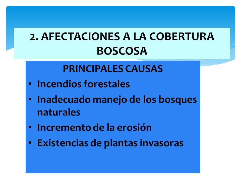 12 2. AFECTACIONES A LA COBERTURA BOSCOSA PRINCIPALES CAUSAS Incendios forestales Inadecuado manejo de los bosques naturales Incremento de la erosión