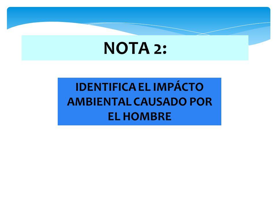 NOTA 2: IDENTIFICA EL IMPÁCTO AMBIENTAL CAUSADO POR EL HOMBRE