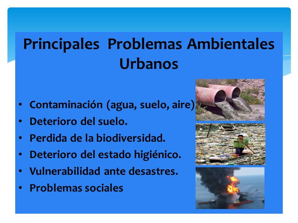 Principales Problemas Ambientales Urbanos Contaminación (agua, suelo, aire) Deterioro del suelo. Perdida de la biodiversidad. Deterioro del estado hig