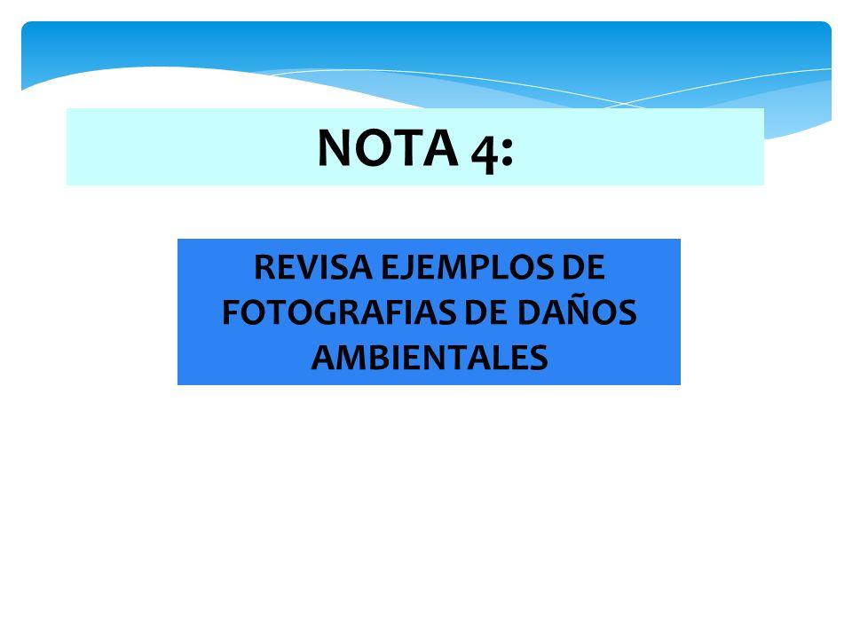 NOTA 4: REVISA EJEMPLOS DE FOTOGRAFIAS DE DAÑOS AMBIENTALES