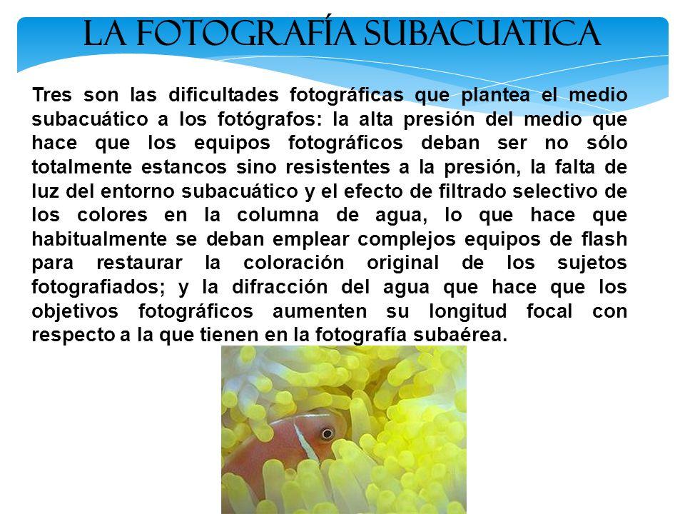Tres son las dificultades fotográficas que plantea el medio subacuático a los fotógrafos: la alta presión del medio que hace que los equipos fotográfi