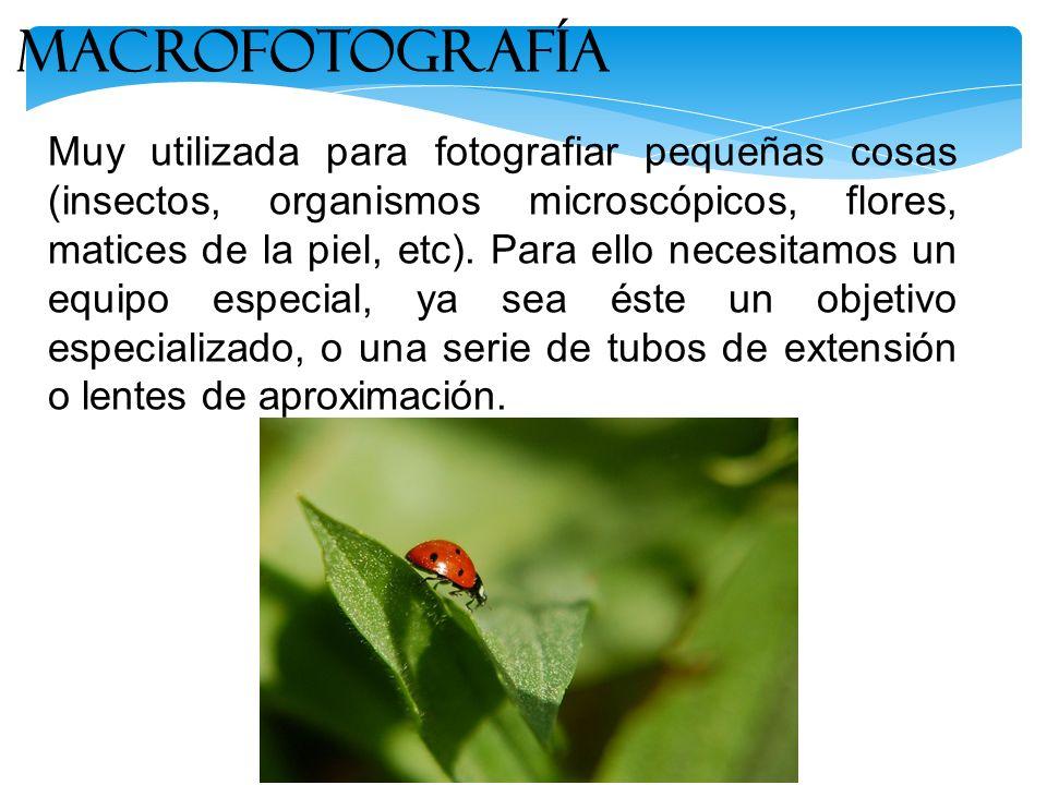 Muy utilizada para fotografiar pequeñas cosas (insectos, organismos microscópicos, flores, matices de la piel, etc). Para ello necesitamos un equipo e