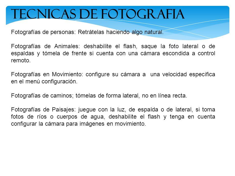 Fotografías de personas: Retrátelas haciendo algo natural. Fotografías de Animales: deshabilite el flash, saque la foto lateral o de espaldas y tómela