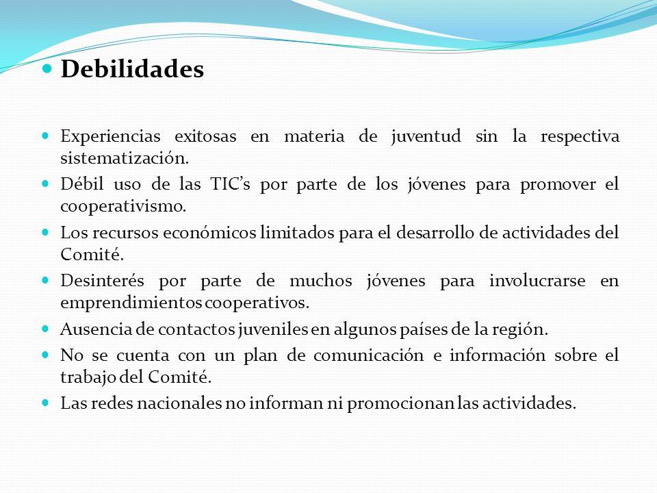 Cancún, México EL 17 de noviembre del 2011 al finalizar el Encuentro Internacional: Ustedes y yo construyendo un mundo mejor la Junta Directiva del Comité realizó una reunión técnica para tratar los siguientes temas: ICoopArte IIEstrategia de Impulso entre jóvenes IIIPasantías IVReuniones Virtuales