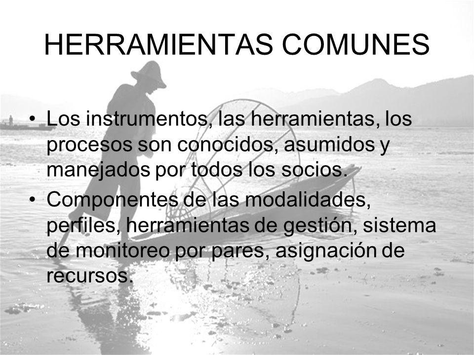 HERRAMIENTAS COMUNES Los instrumentos, las herramientas, los procesos son conocidos, asumidos y manejados por todos los socios.