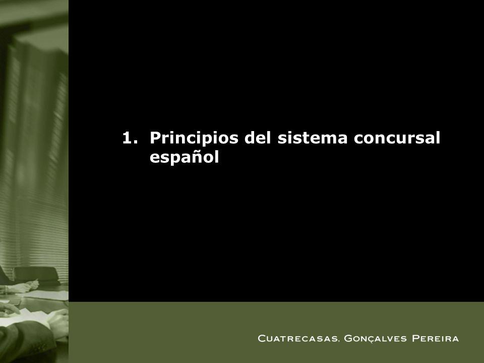 1.Principios del sistema concursal español