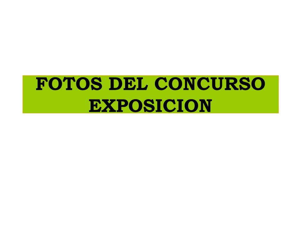 FOTOS DEL CONCURSO EXPOSICION