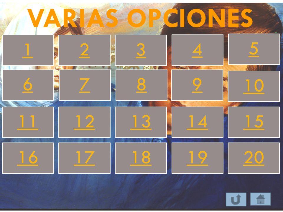 VARIAS OPCIONES 123 4 5 67 8 9 10 1112131415 1617181920