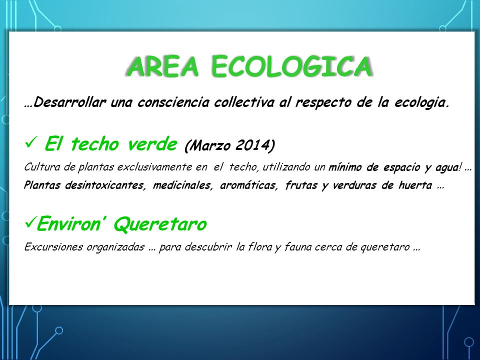 AREA ECOLOGICA …Desarrollar una consciencia collectiva al respecto de la ecologia. El techo verde (Marzo 2014) Cultura de plantas exclusivamente en el