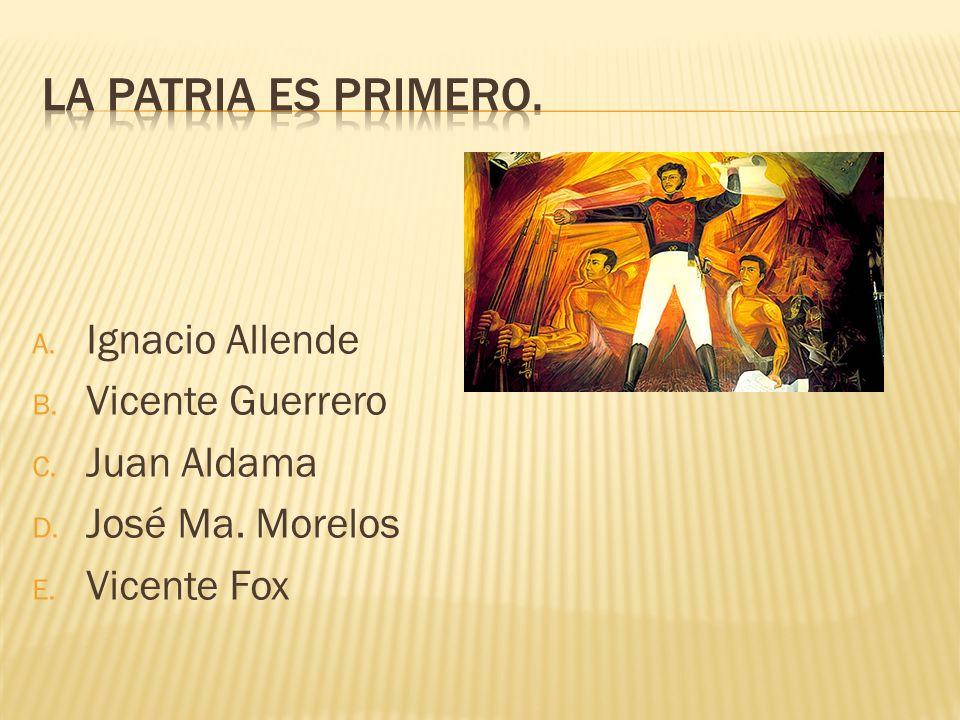 A. Ignacio Allende B. Vicente Guerrero C. Juan Aldama D. José Ma. Morelos E. Vicente Fox