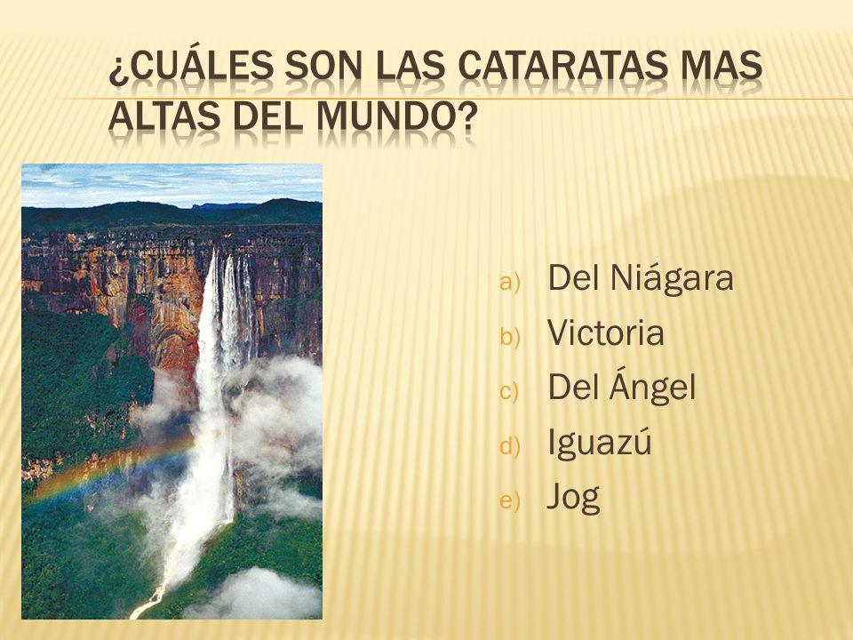a) Del Niágara b) Victoria c) Del Ángel d) Iguazú e) Jog