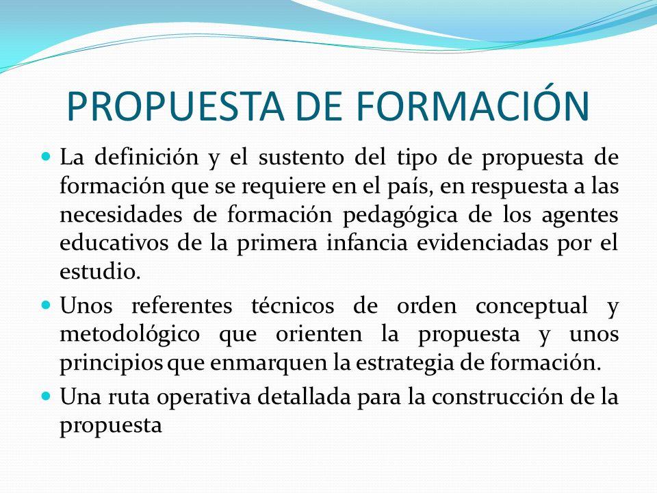 PROPUESTA DE FORMACIÓN La definición y el sustento del tipo de propuesta de formación que se requiere en el país, en respuesta a las necesidades de fo