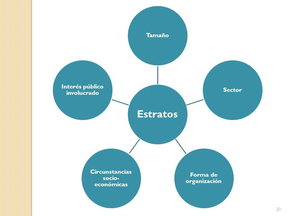 Estratos TamañoSector Forma de organización Circunstancias socio- económicas Interés público involucrado 20