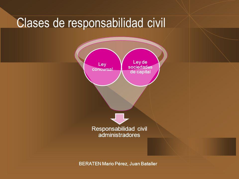 Clases de responsabilidad civil BERATEN Mario Pérez, Juan Bataller Responsabilidad civil administradores Ley de sociedades de capital Ley concursal
