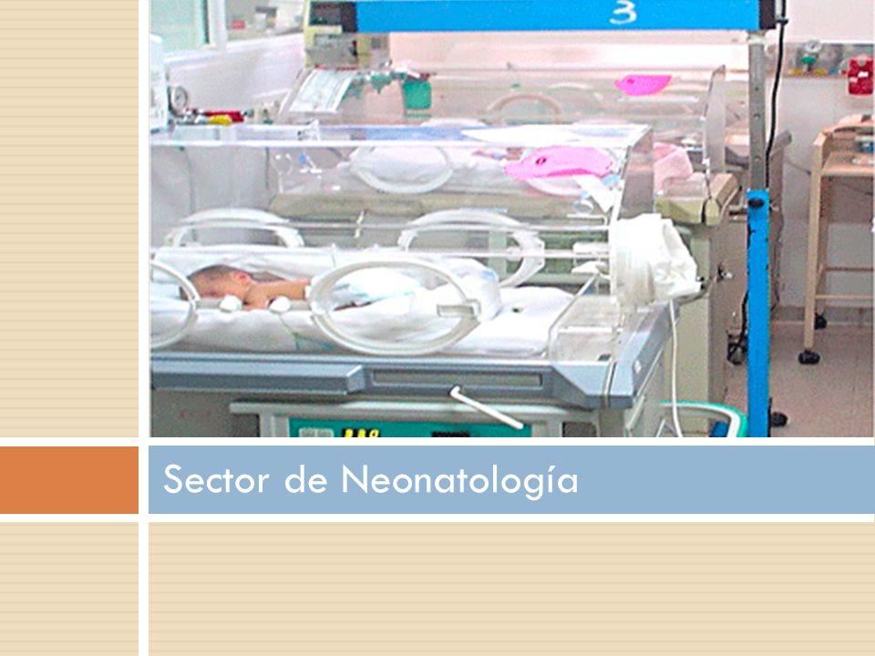 Sector de Neonatología