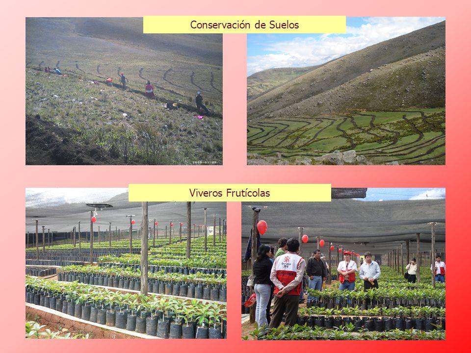 Conservación de Suelos Viveros Frutícolas