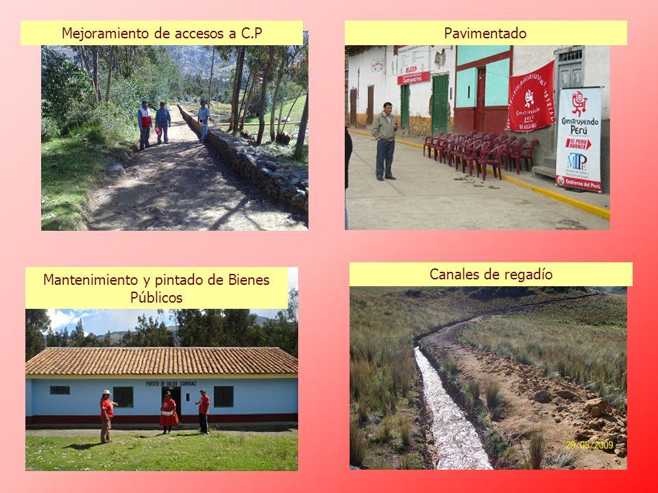 Mejoramiento de accesos a C.PPavimentado Mantenimiento y pintado de Bienes Públicos Canales de regadío