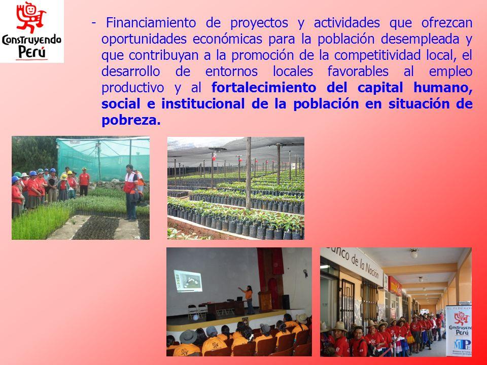 - Financiamiento de proyectos y actividades que ofrezcan oportunidades económicas para la población desempleada y que contribuyan a la promoción de la