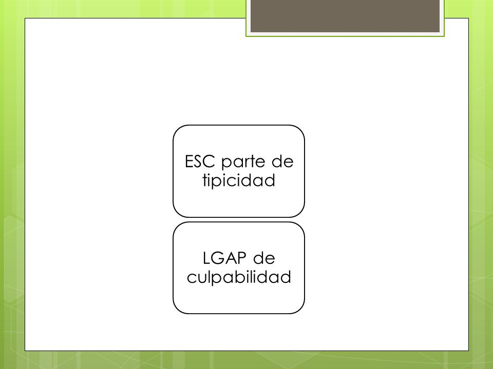 ESC parte de tipicidad LGAP de culpabilidad